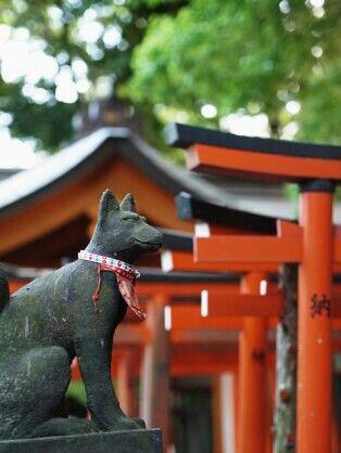 東京の根津神社はおすすめの穴場初詣スポット