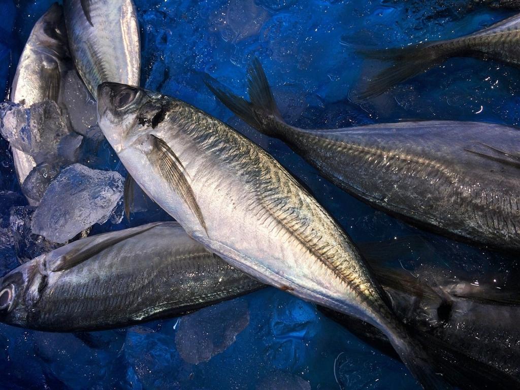 魚が尾頭付きで販売していないとダメなスーパーマーケット