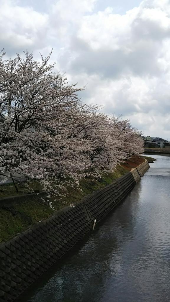 f:id:inkyoishikawa:20190116221045j:plain