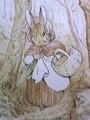 [art]ビアトリクス・ポター Beatrix Potter 「ピーター・ラビットの話」