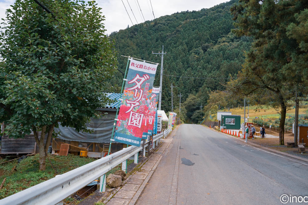 両神山麓花の郷ダリア園ののぼり