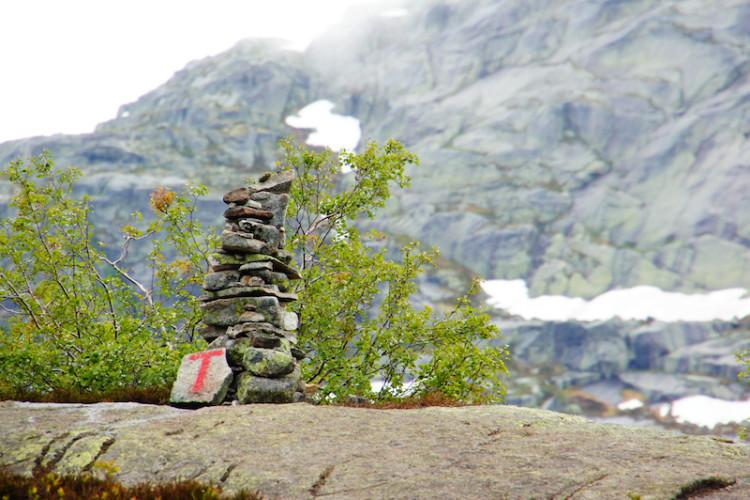 登山道を示すTの字