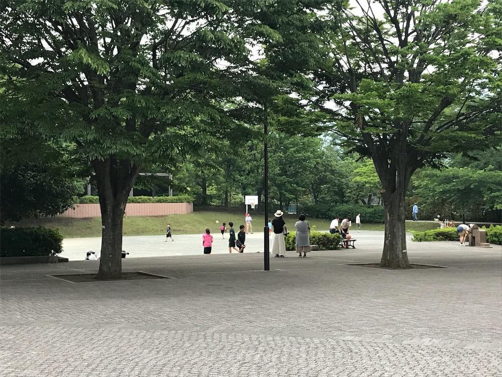 f:id:inosuke1009:20190603115554j:image