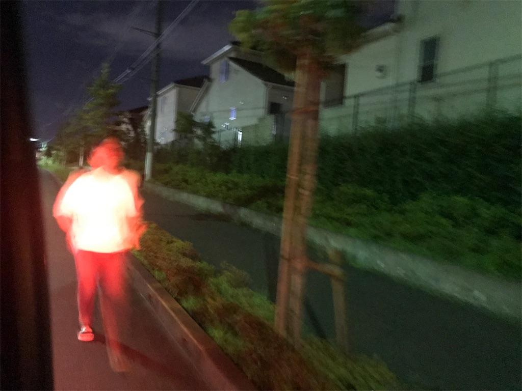 f:id:inosuke1009:20190805080126j:image