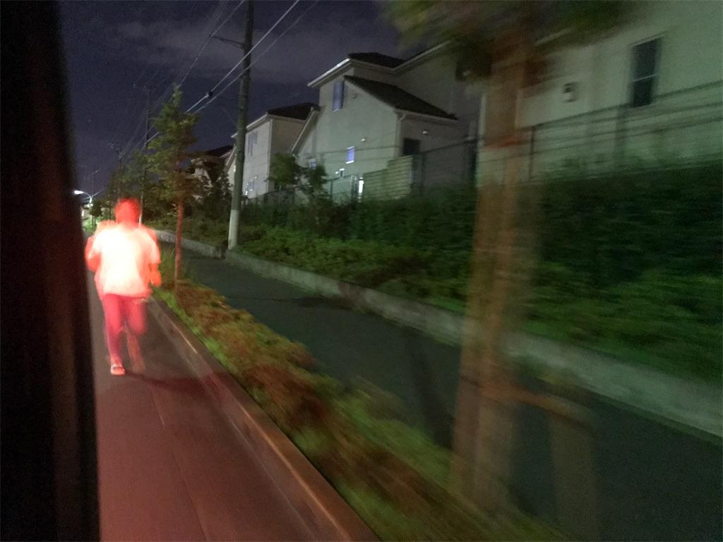 f:id:inosuke1009:20190805080245j:image