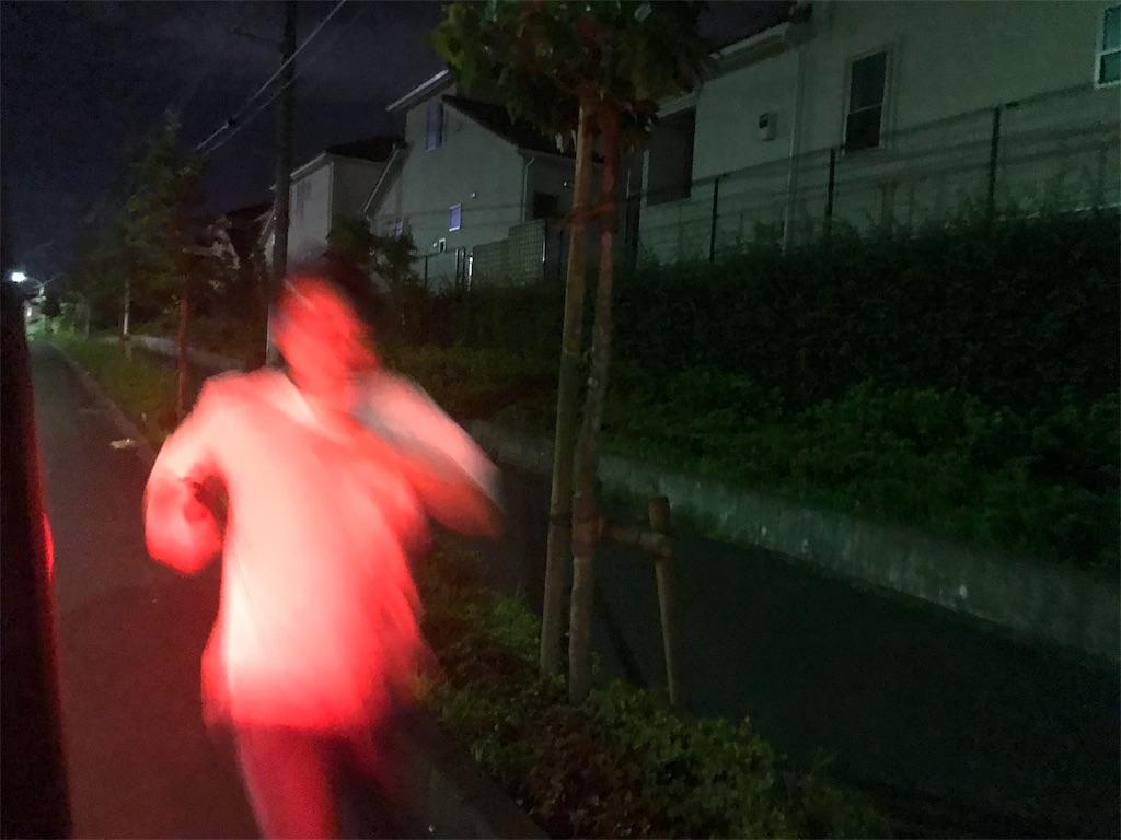 f:id:inosuke1009:20190805080252j:image