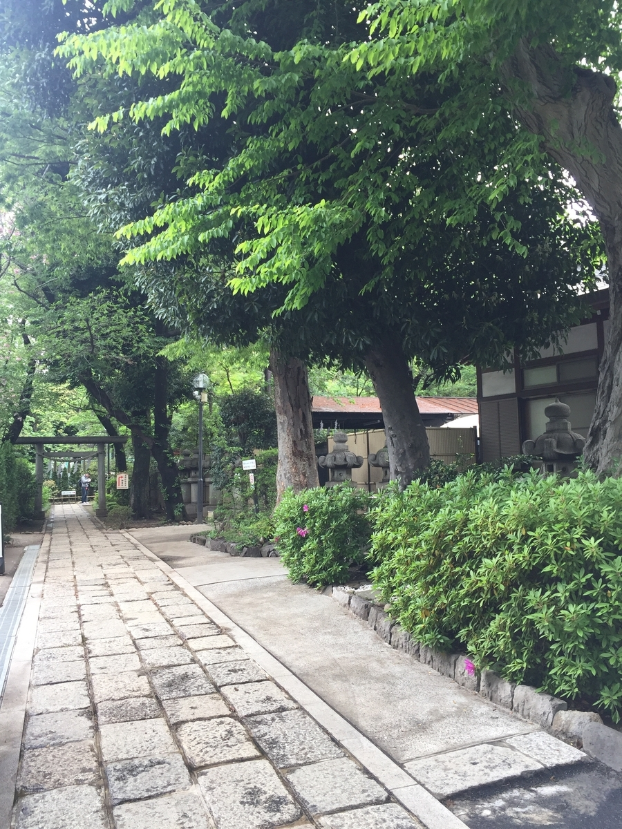 f:id:inoue-0218-yuko:20190428080422j:plain