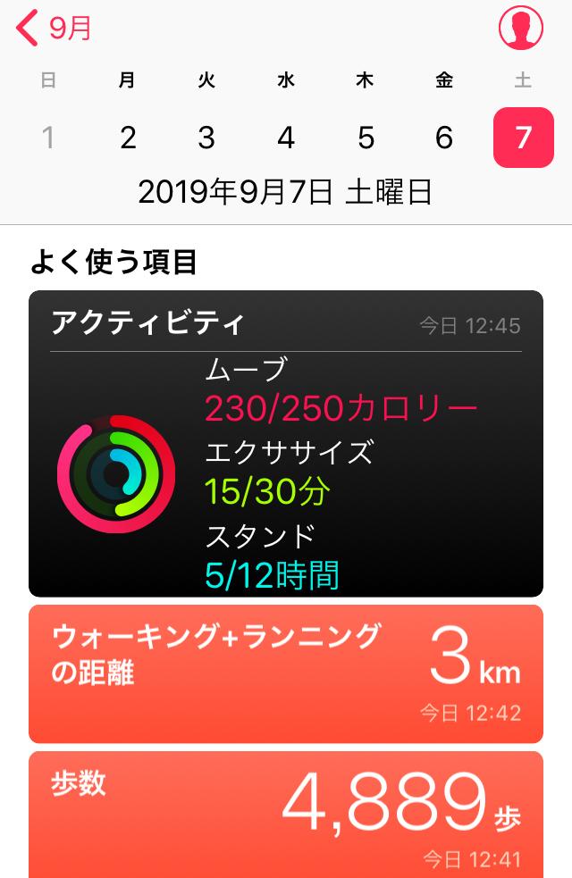 f:id:inoue-0218-yuko:20190907125440j:plain