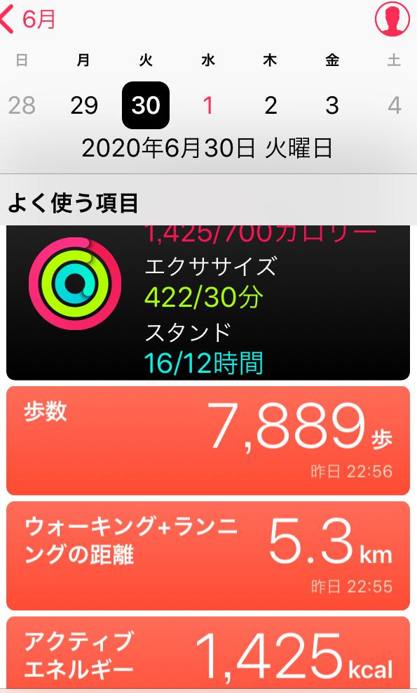 f:id:inoue-0218-yuko:20200701145728j:plain