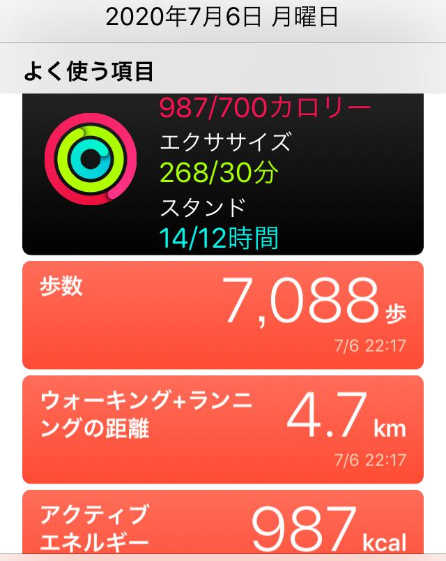 f:id:inoue-0218-yuko:20200711183435j:plain