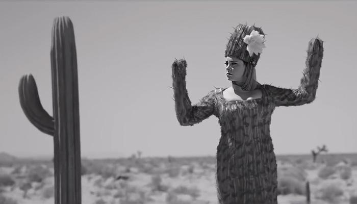 『クレイジー・エックス・ガールフレンド』で、レベッカがサボテンの格好をする