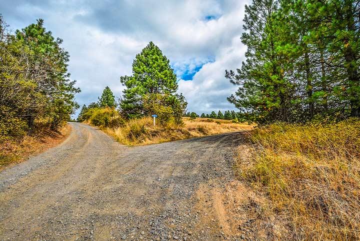 分岐する田舎道