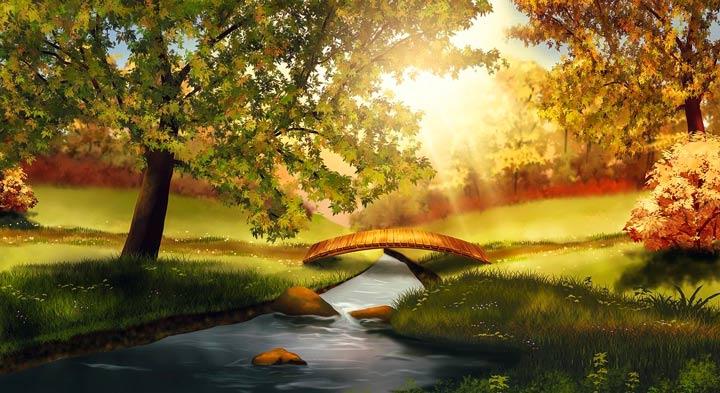 紅葉の秋の小川に日が差す