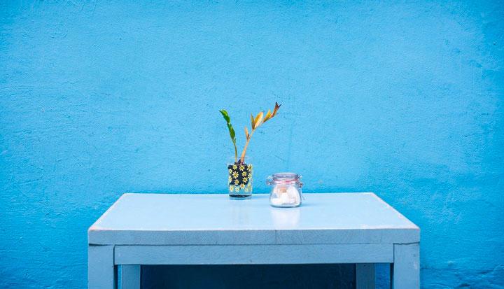 青い壁に接してる机の上に観葉植物と角砂糖の瓶