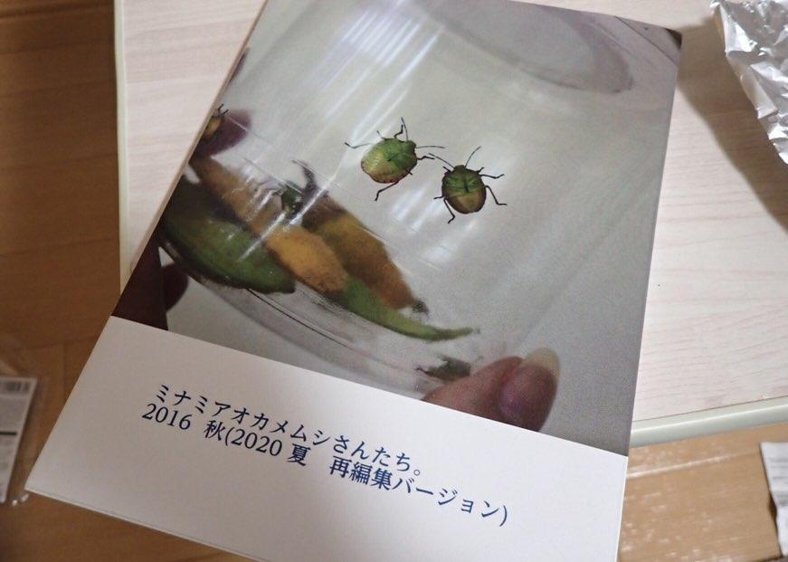 f:id:insectmania:20201130000733j:plain