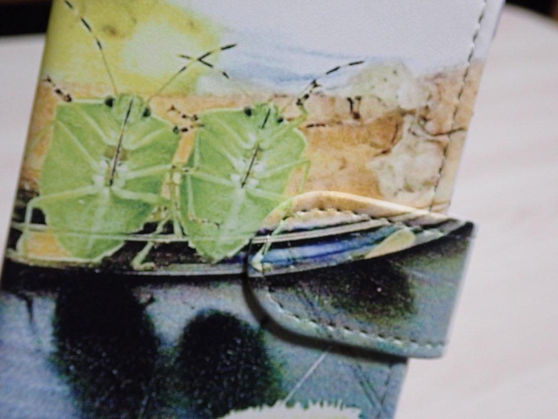 f:id:insectmania:20210117010554j:plain