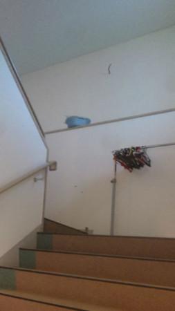 f:id:interlock-web_zettaikagushounen:20111012182140j:image