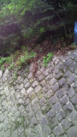 f:id:interlock-web_zettaikagushounen:20120720202747j:image