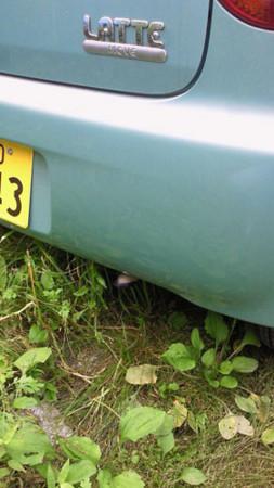 f:id:interlock-web_zettaikagushounen:20120721201925j:image
