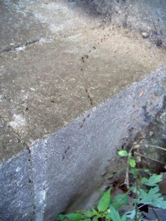 f:id:interlock-web_zettaikagushounen:20120731192624j:image