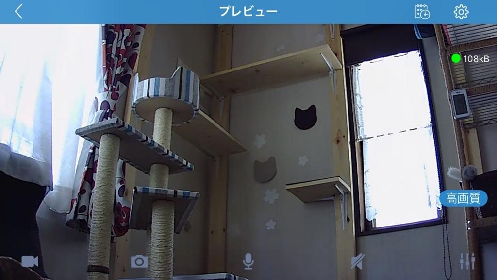 f:id:inu-neko_jyuku:20170707133902j:plain