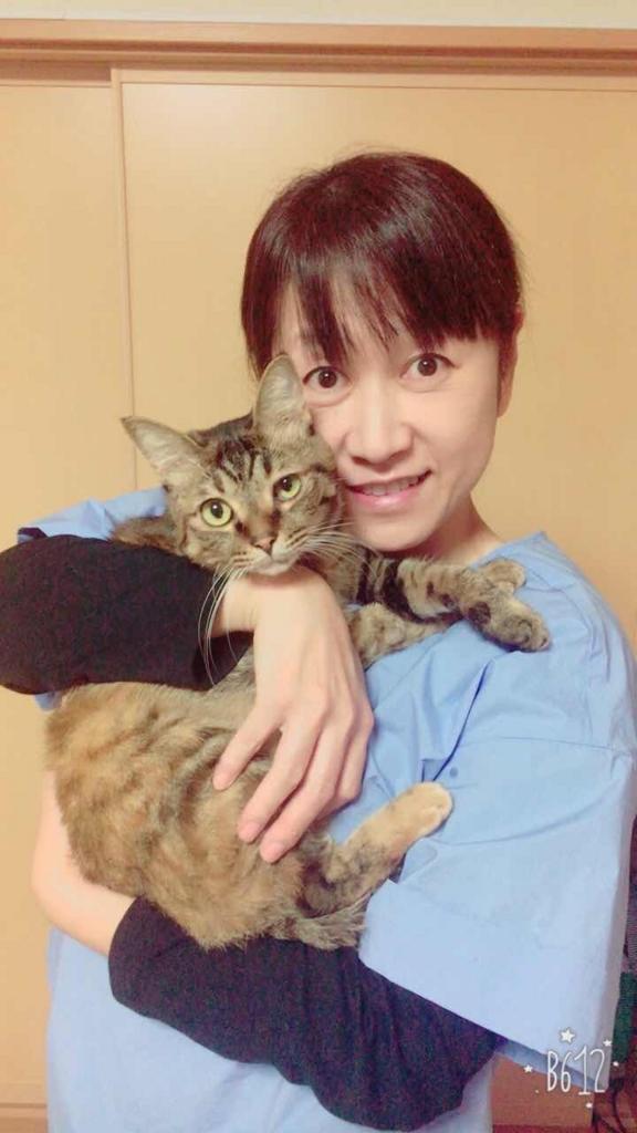 f:id:inu-neko_jyuku:20171027180752j:plain