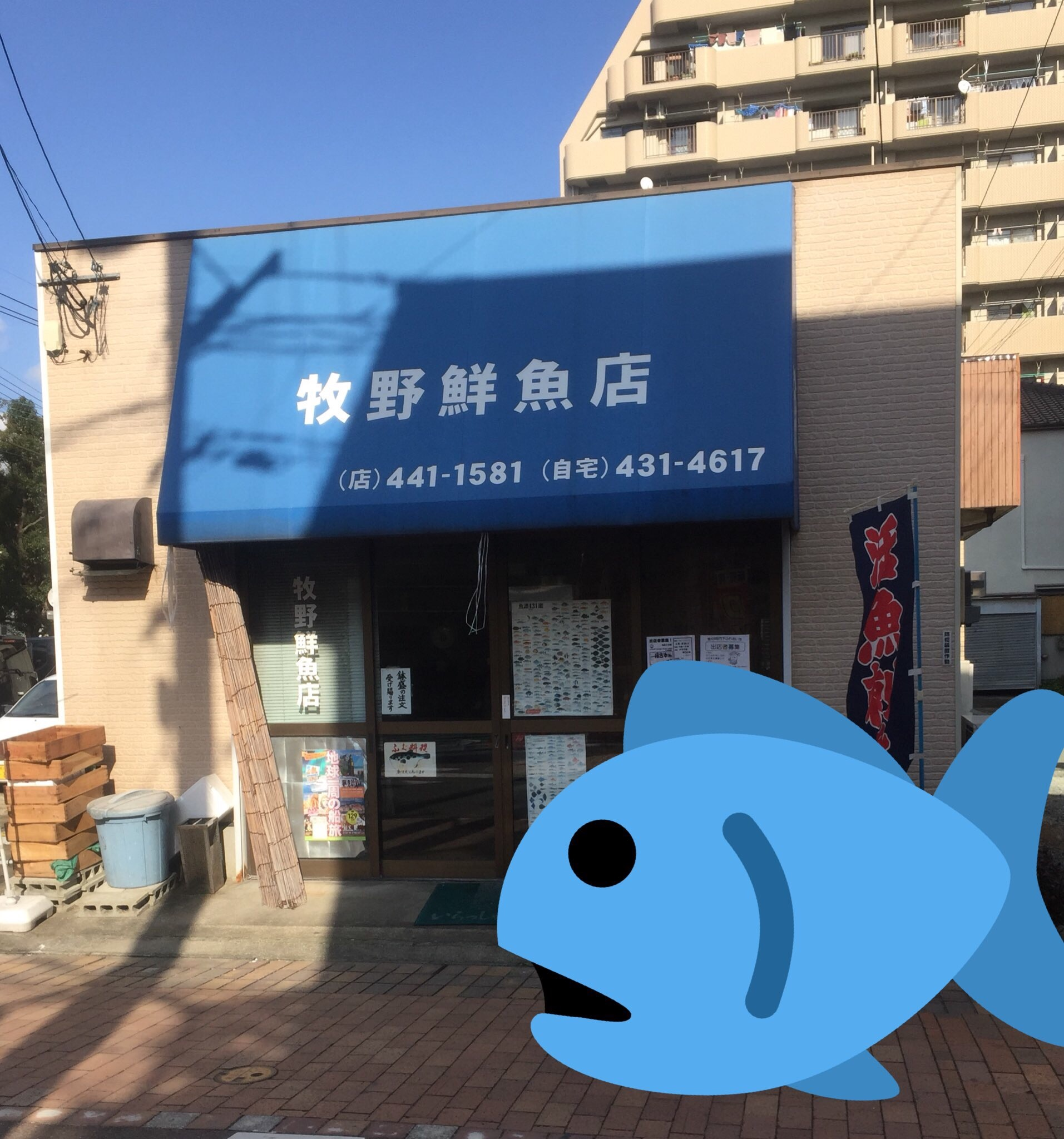 f:id:inu_wanwan:20170204195337j:image