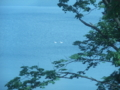 [洞爺湖]洞爺湖