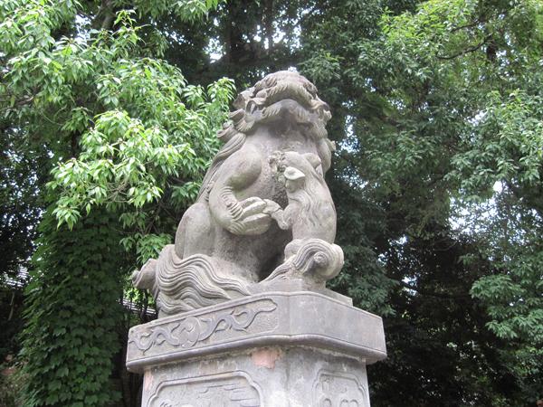 阿佐ヶ谷神明宮の左の狛犬