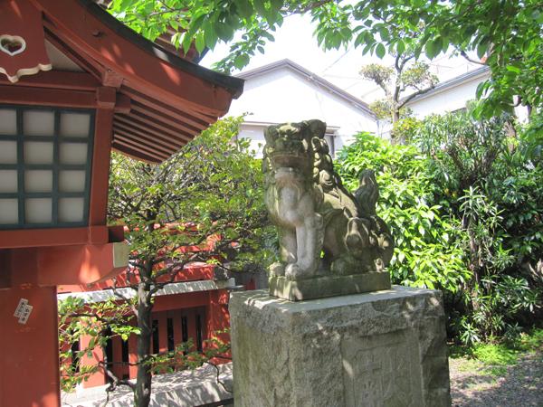 秋葉神社の右の狛犬