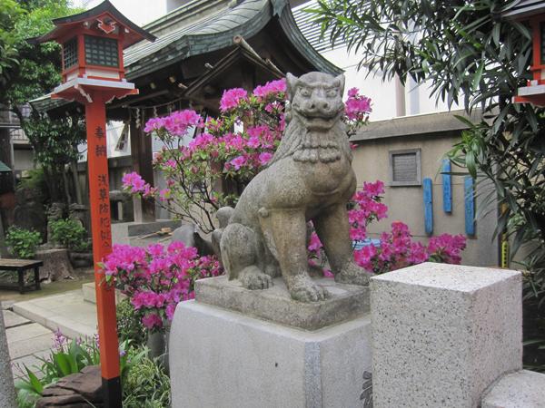 吉原神社の右の狛犬