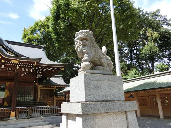 荻窪八幡神社の右の狛犬