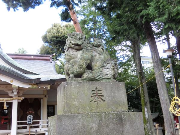 天沼八幡神社の右の狛犬