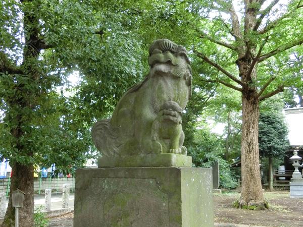 三鷹神明社の左の狛犬