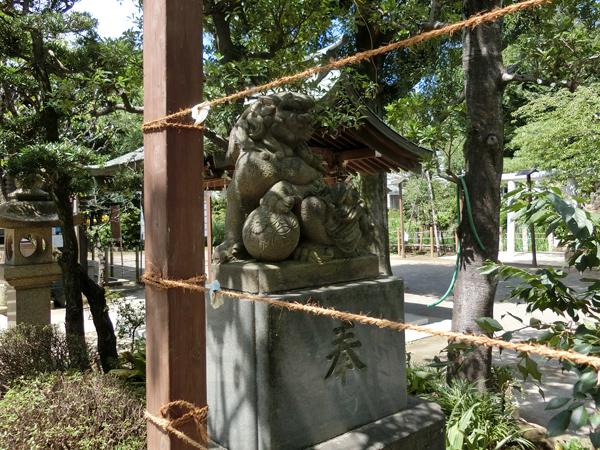 鳩森八幡神社の右の狛犬