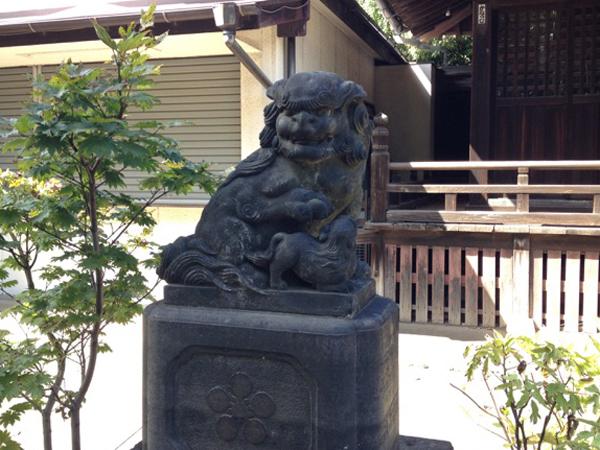 新井天神北野神社の左の狛犬