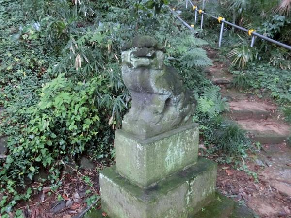 大麻止乃豆乃天神社の右の狛犬