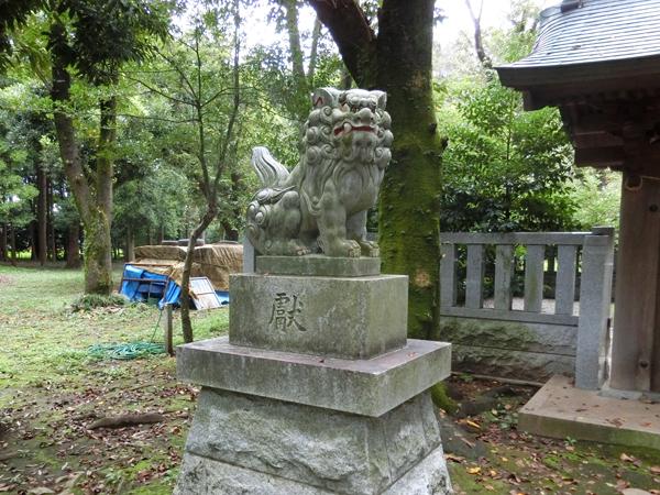 武蔵国府八幡宮の左の狛犬