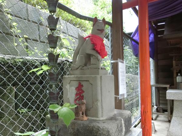 白菊稲荷神社の左の狐