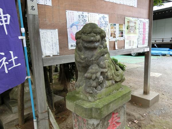 幡ヶ谷氷川神社の右の狛犬