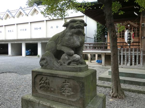 本郷氷川神社の左の狛犬