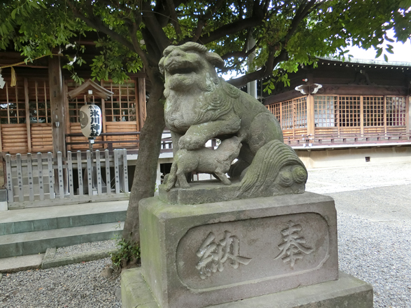 本郷氷川神社の右の狛犬