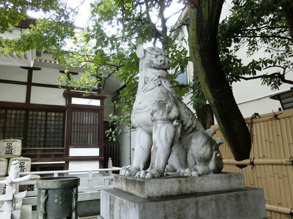 鳥越神社の右の狛犬