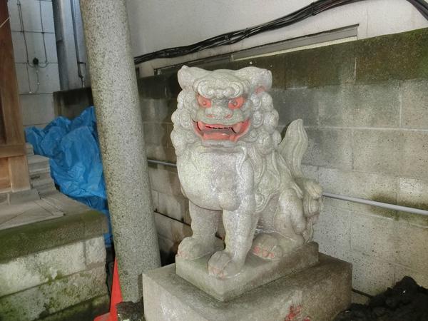 台東区金刀比羅神社の右の狛犬