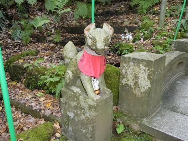 佐助稲荷神社の左の狐