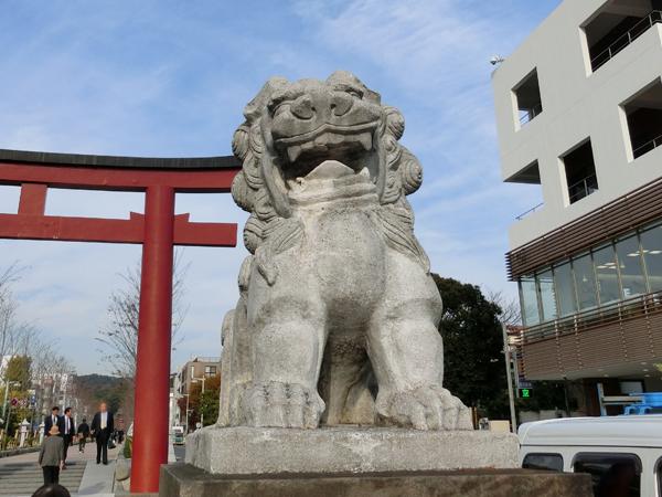 鶴岡八幡宮の右の狛犬