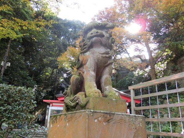 江島神社辺津宮の左の狛犬
