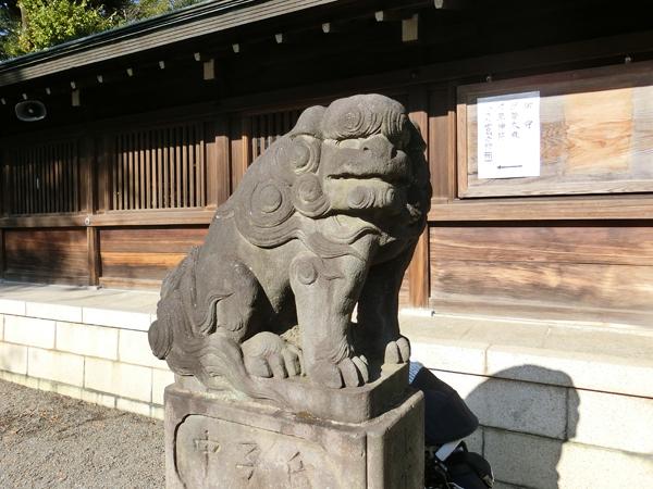 井草八幡宮の左の狛犬