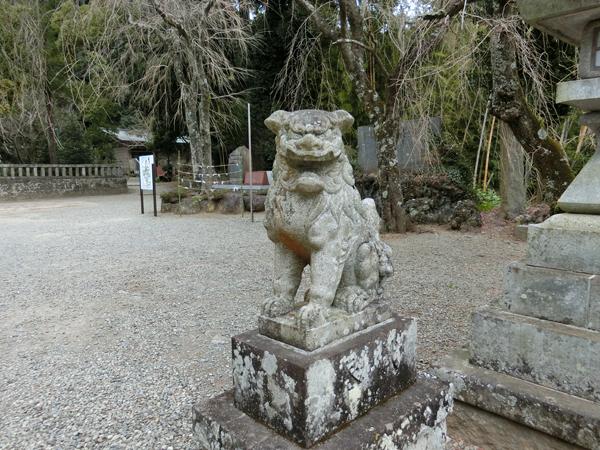 伊豆山神社の右の狛犬