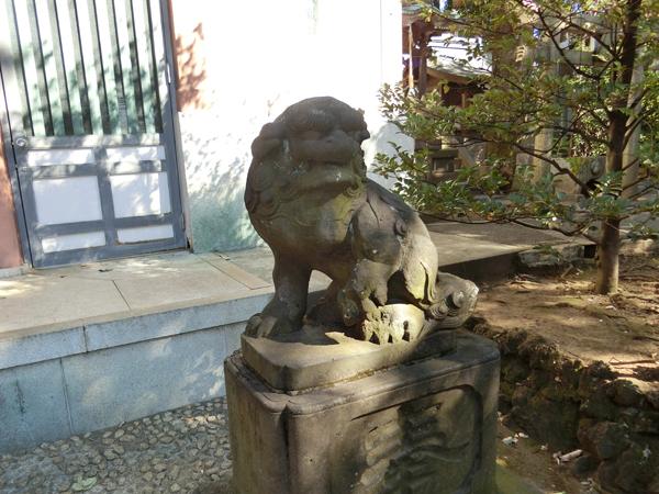 北澤八幡神社の右の狛犬